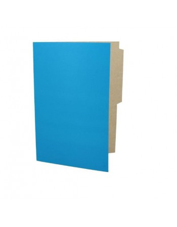 -Carpeta Pigmentada Color Celeste